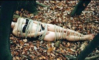 在这些作品中,希格丽德被脱到仅着内衣裤,并遭绳子捆绑。