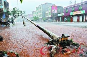 台风给海南造成严重经济损失 全省转移45万余人