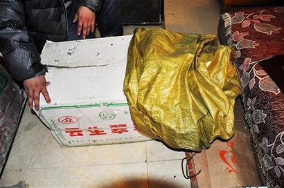 男子8000元网售金雕 卖家为制作完整标本缝鹰眼
