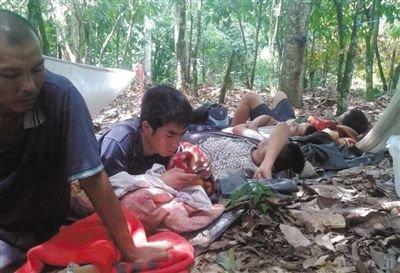 为躲避加纳军警,一些中国采金者在附近的可可树林躲藏。本版图片由中国采金者提供