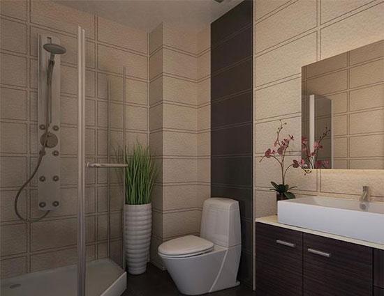 厕所 家居 设计 卫生间 卫生间装修 装修 550_425