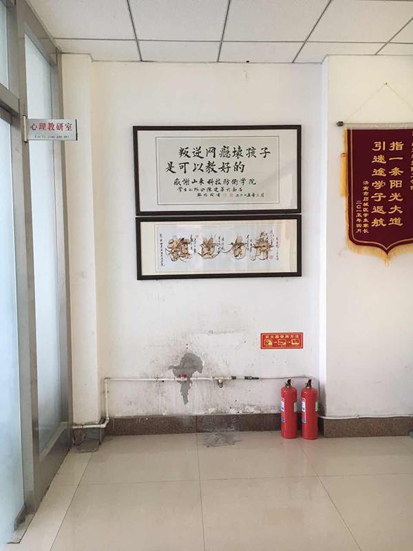 16岁弑母少女陈欣然的惊天悲剧,曾被父母强制送到网戒学校山东科技防卫专修学院