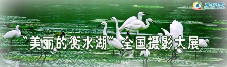 """""""美丽的衡水湖""""全国摄影大展"""