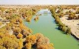 新疆塔里木河生态输水 荒漠变湖泊美不胜收