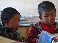 两个孩子认真看送来的画册