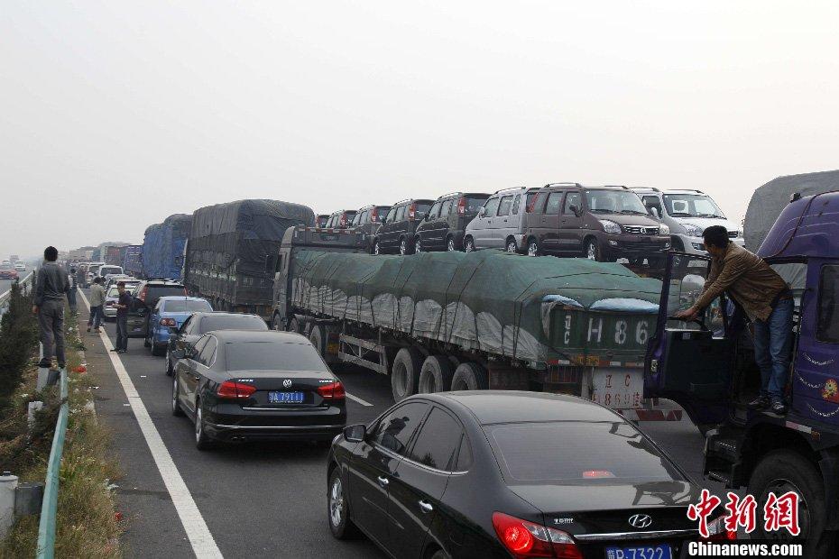 王中举摄-国庆高速免费首日再现大堵车 车主高速路上遛狗