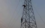 男孩爬30米高高压线塔掏鸟窝 触电被困