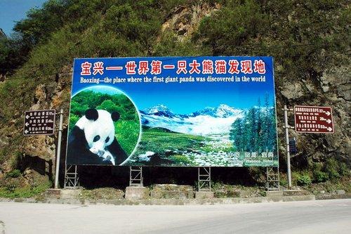 雅安宝兴县已取得联系 当地电力设备受损严重