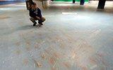 日本一滑冰场在冰面下铺五千条鱼遭批
