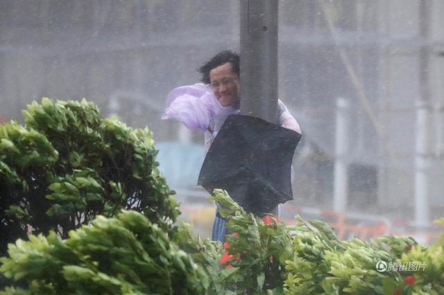"""强台风""""天鸽""""登陆华南 市民紧抱路灯竿"""