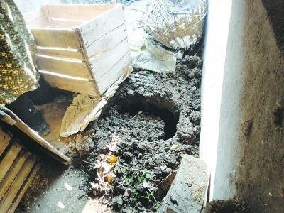 男子杀人后自挖地窖藏身12年 母亲每天送饭