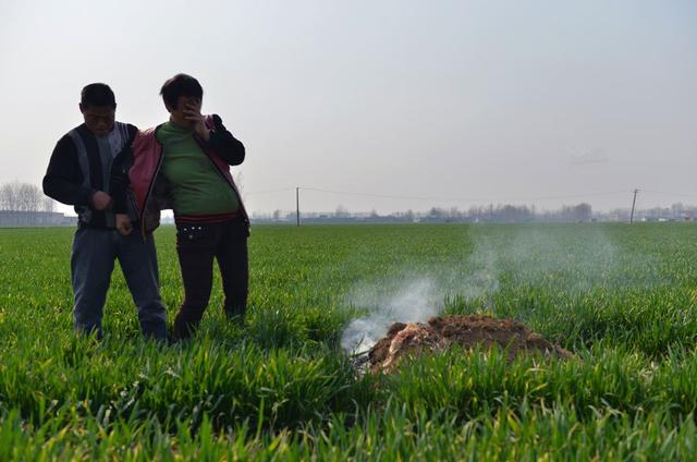 山东43岁农村失独母亲再孕 产前给丧子上坟(图)
