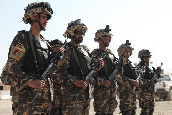 阿富汗安全部队击毙5名制造炸弹的塔利班成员
