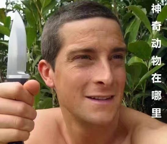 新闻哥吐槽:小偷扮成女护士行窃 因没扎头发被识破,功课做得不到家啊图片