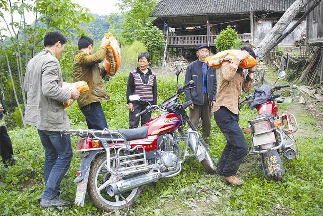 湖北摩托四兄弟绝壁凿路 为山上留守老人送物资