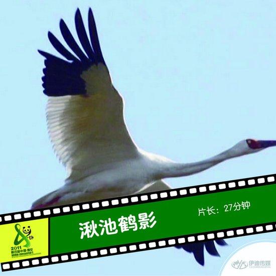 2011雅安电影节国内参展影片《湫池鹤影》