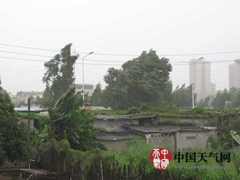 """强台风""""彩虹""""登陆【xx】为10月登陆广东最强台风"""