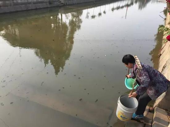 洞庭湖缺水,2015年11月,湖南省南县石坝村肖喜福老人家中面临的水质型缺水难题。地下水不能喝,只能到被污染的河沟里挑水喝。新华社记者周楠摄
