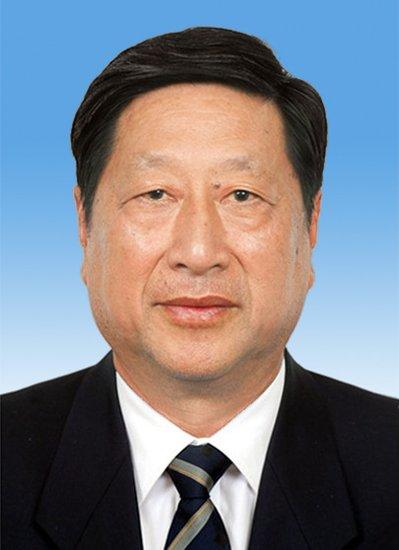 张平当选为十二届全国人大常委会副委员长