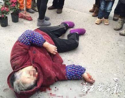 四川3岁幼童驾驶一辆微型货车撞伤老太(图)