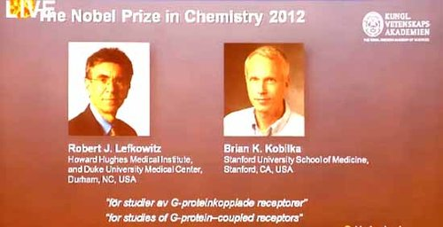 两名美国科学家获诺贝尔化学奖 分享120万奖金