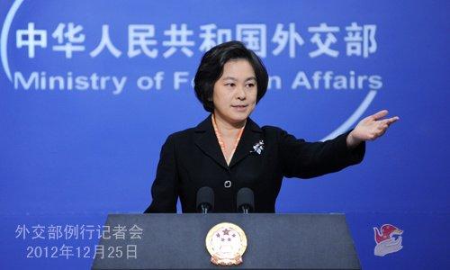 外交部就日本拦截中国海监飞机等答问(实录)