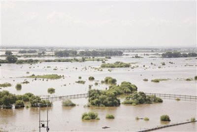 黑瞎子岛汛情严峻 中方领土面积八成以上被淹没