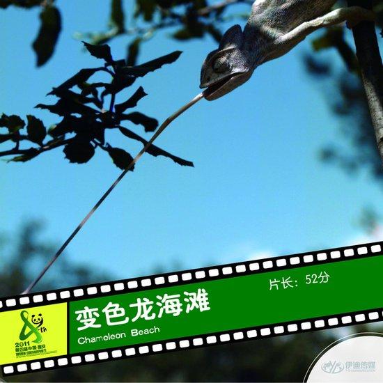 2011雅安电影节国际参展影片《变色龙海滩》