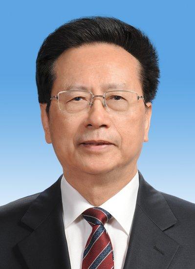 陈昌智当选为十二届全国人大常委会副委员长