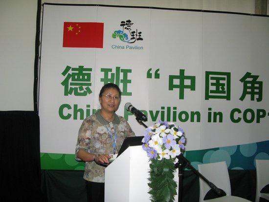 """中国绿色碳汇基金会为德班""""中国角""""边会添彩"""