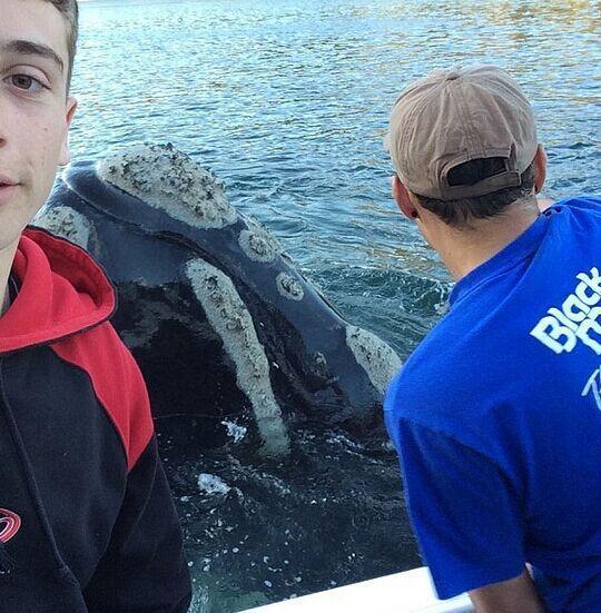 """【环球网报道 记者 程君秋】据""""美国中文网""""8月13日报道,澳大利亚的一群年轻渔民日前拥有了一次奇妙的经历。一头大鲸鱼竟然向他们求助,而在他们成功帮助它之后,鲸鱼配合他们拍下几张棒极了的自拍,像是用这种方式表达感谢。"""