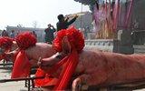 渔村传承两千年谷雨独特祭祀,充气染红大肥猪摆一溜