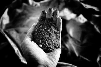 """揭秘""""玉兔""""地面试验:模拟月壤火山灰来自吉林"""