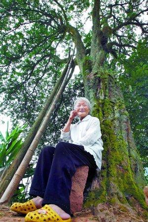 雷婆婆经常就这样在树下静静坐着,甚至与树对话。