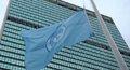 大家:谁还需要联合国