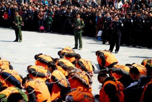 河南项城公处51名犯罪嫌疑人 律师称做法不妥(图)