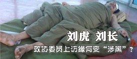 """刘虎、刘长:政协委员上访缘何变""""涉黑""""?"""