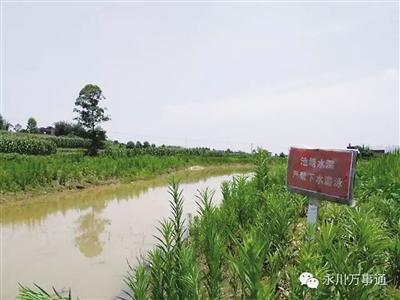 重庆10岁双胞胎姐妹在村中水塘里游泳溺亡