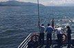 游客乘游轮拍照手机掉入洱海 欲跳船寻机