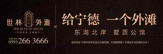 世林外滩:感念师恩 多肉盆栽献礼教师节