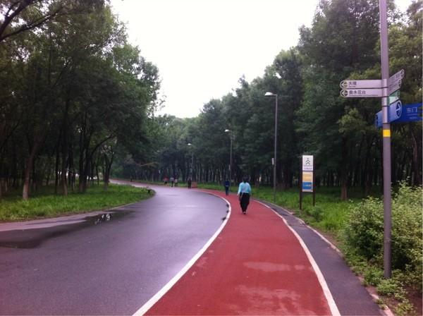 北京奥林匹克森林公园是很多跑步者的圣地