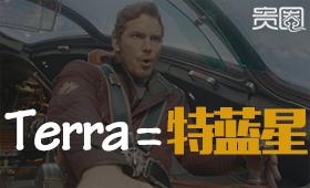 """terra""的译法被网友吐槽的频率最高"