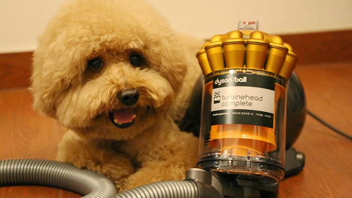 搞机零距离:吸尘器10倍价差究竟差在哪?