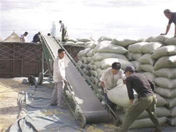 我国粮食运输仍以包装式运输为主,导致浪费比较严重