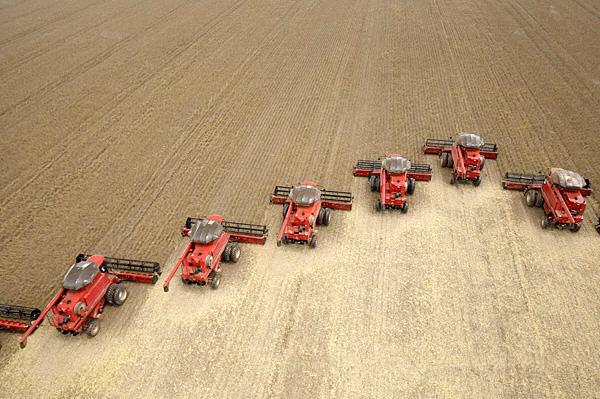 巴西马托格罗索州的一个农场在收割大豆