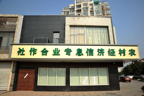 """山寨银行的名字是""""农村经济信息专业合作社"""""""