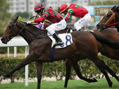 赛马是香港赛马会的主营业务