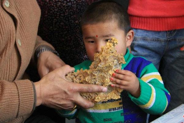 新疆牧人发现的重达7.8公斤的狗头金