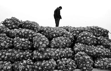蒜农看着被退回的大蒜低头惆怅