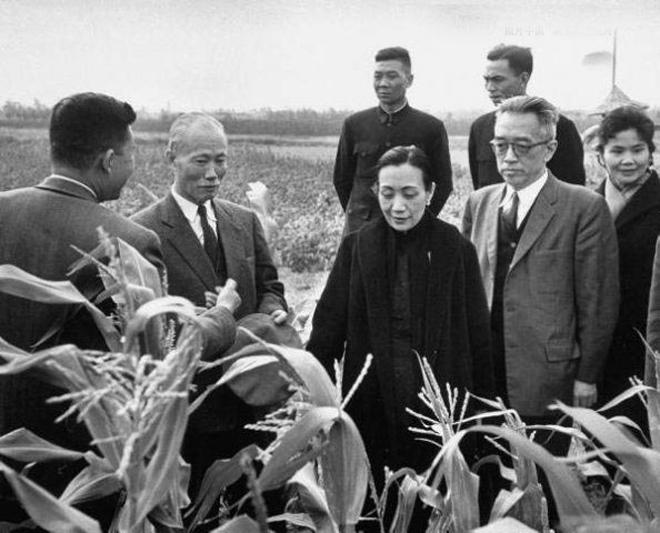 陈诚、宋美龄、胡适等下乡视察台湾农业